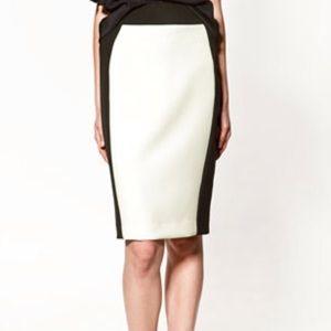 ZARA Basics Fully lined Black and White skirt